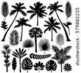 vector illustrations silhouette ... | Shutterstock .eps vector #579882235
