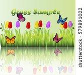 very high quality original... | Shutterstock .eps vector #579891022
