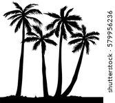 palm tree   vector illustration | Shutterstock .eps vector #579956236