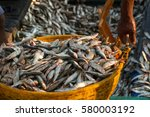 unloading of the fishing ship.... | Shutterstock . vector #580003192