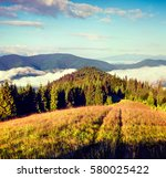 sunny summer morning in the... | Shutterstock . vector #580025422