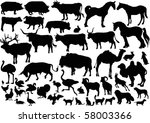 Stock vector illustration with farm animals collection isolated on white background 58003366