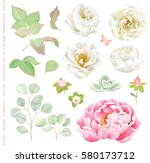 floral set with white roses ... | Shutterstock .eps vector #580173712