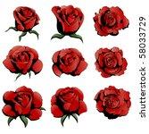 nine red roses | Shutterstock .eps vector #58033729