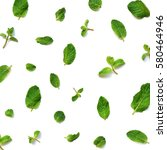 mint leaves on white background  | Shutterstock . vector #580464946