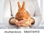 Stock photo woman holding cute fluffy rabbit closeup 580476955