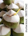 coconuts juice in shell  | Shutterstock . vector #580575562