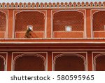india jaipur monkey roof | Shutterstock . vector #580595965