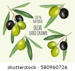 beautiful hand drawn olive... | Shutterstock .eps vector #580960726