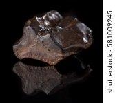 upper cretaceous fossilized... | Shutterstock . vector #581009245