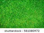 green lawn backyard for... | Shutterstock . vector #581080972