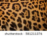 Real Leopard Skin For...