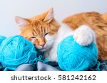 Stock photo ginger cat playing with a ball of thread 581242162