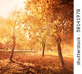 autumn at the morning park | Shutterstock . vector #58141978