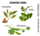 ayurvedic herbs set of plant... | Shutterstock .eps vector #581430682