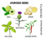 ayurvedic herbs collection on... | Shutterstock .eps vector #581430712