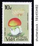 Small photo of MOSCOW, RUSSIA - FEBRUARY 12, 2017: A stamp printed in Vietnam shows Amanita caesarea, series, circa 1983