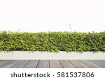 old wooden decking and plant... | Shutterstock . vector #581537806