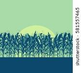 corn field evening or morning... | Shutterstock .eps vector #581557465