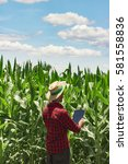 Small photo of Farmer or agronomist with hat using digital tablet computer in cultivated corn field plantation. Modern technology application in agricultural growing activity. Concept Image.