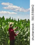 Small photo of Farmer or agronomist with hat using digital tablet computer and analyzing a cultivated corn field plantation. Modern technology application in agricultural growing activity. Concept Image.