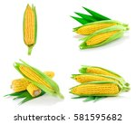 corn fruit with slices isolated ... | Shutterstock . vector #581595682