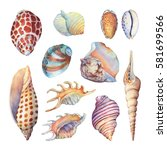 set of underwater life objects  ... | Shutterstock . vector #581699566