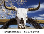 Horned Cow Skull On Fence With...