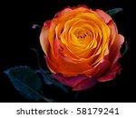 Single Red Rose With Orange...