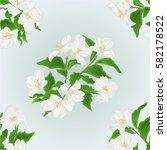 seamless texture flower jasmine ... | Shutterstock .eps vector #582178522