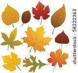 autumn leaves   Shutterstock .eps vector #58222363