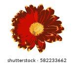 flower | Shutterstock .eps vector #582233662