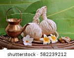 powder ayurveda pads with pot ... | Shutterstock . vector #582239212