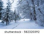 winter park | Shutterstock . vector #582320392