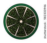 fresh fruit slice isolated icon   Shutterstock .eps vector #582333946