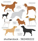 hunting dog breeds collection... | Shutterstock .eps vector #582400222