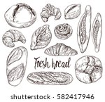 vintage hand drawn sketch style ... | Shutterstock .eps vector #582417946