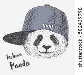 panda in rapper cap. vector   Shutterstock .eps vector #582439798