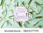 Hello Spring Calligraphy Note...