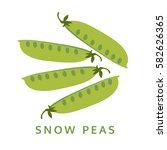 snow peas illustration ...   Shutterstock .eps vector #582626365