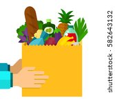 package of food in human hands... | Shutterstock .eps vector #582643132