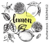 ink hand drawn lemon set with... | Shutterstock .eps vector #582696412