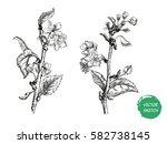 vector illustration of apple... | Shutterstock .eps vector #582738145