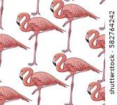 flamingo   vector illustration   Shutterstock .eps vector #582764242