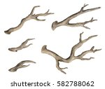 watercolor dry tree branches ... | Shutterstock . vector #582788062