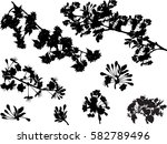 illustration with tree flowers... | Shutterstock .eps vector #582789496