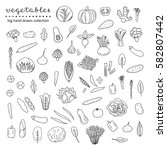 big collection of hand drawn... | Shutterstock .eps vector #582807442