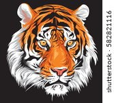 Here Tiger Vector For Your...
