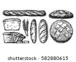 vector hand drawn illustration... | Shutterstock .eps vector #582880615
