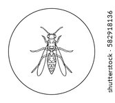 wasp icon in outline style... | Shutterstock .eps vector #582918136